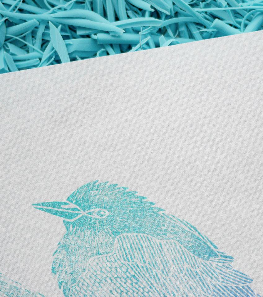 Ana Sola lámina pájaros detalle
