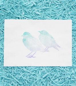 Ana Sola lámina pájaros