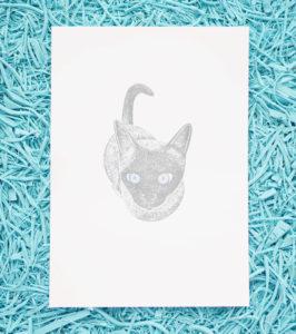 Ana Sola lámina gato
