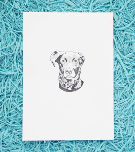 Ana Sola lámina perro