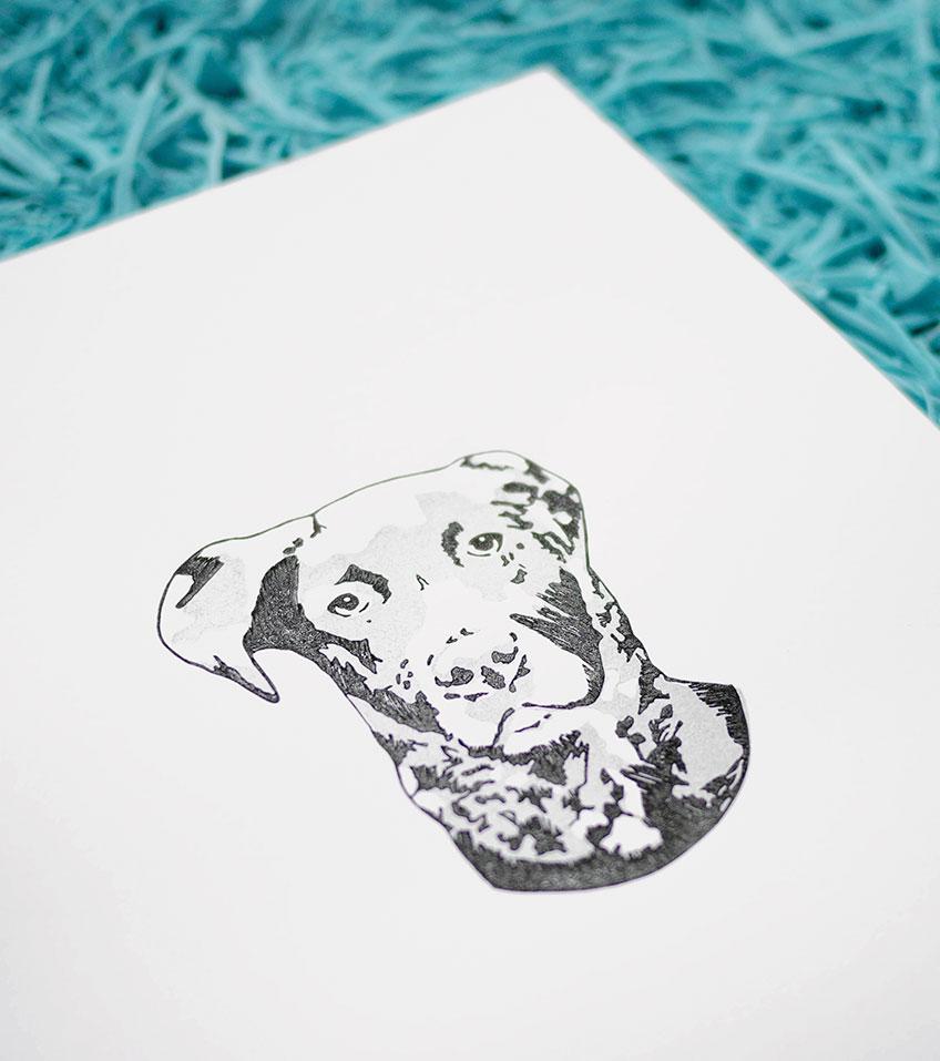 Ana Sola lámina perro detalle