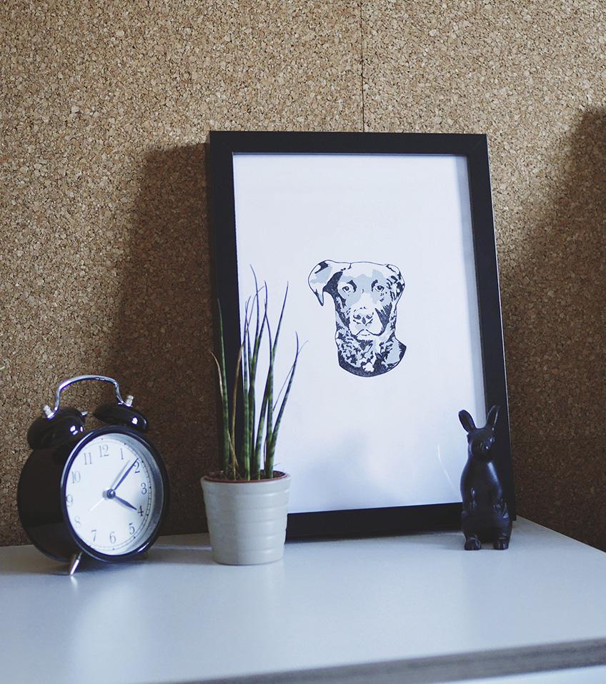 Ana Sola marco lámina perro