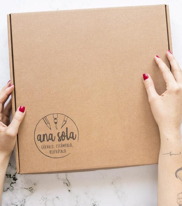 kit-carvado-de-sellos-avanzado-caja-materiales-carvado-sellos-ana-sola