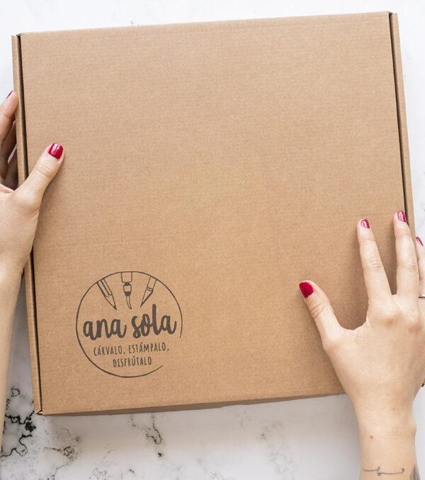 kit-carvado-de-sellos-intermedio-caja-materiales-carvado-sellos-ana-sola