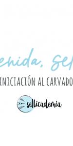 Ana Sola curso carvado de sellos bienvenida sellografa
